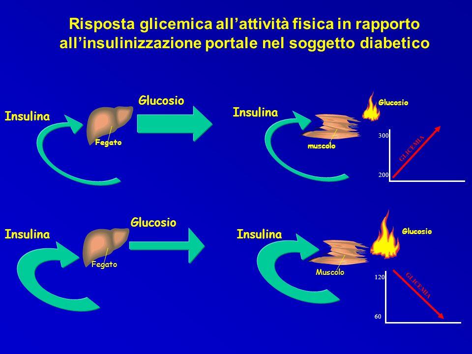 Risposta glicemica allattività fisica in rapporto allinsulinizzazione portale nel soggetto diabetico muscolo Fegato Insulina Glucosio Insulina Glucosi