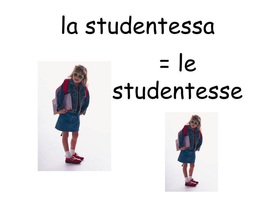 la studentessa = le studentesse