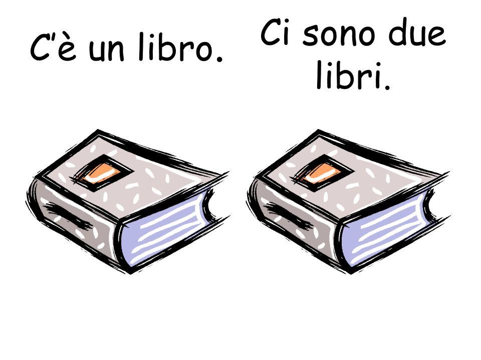 Cè un libro. Ci sono due libri.