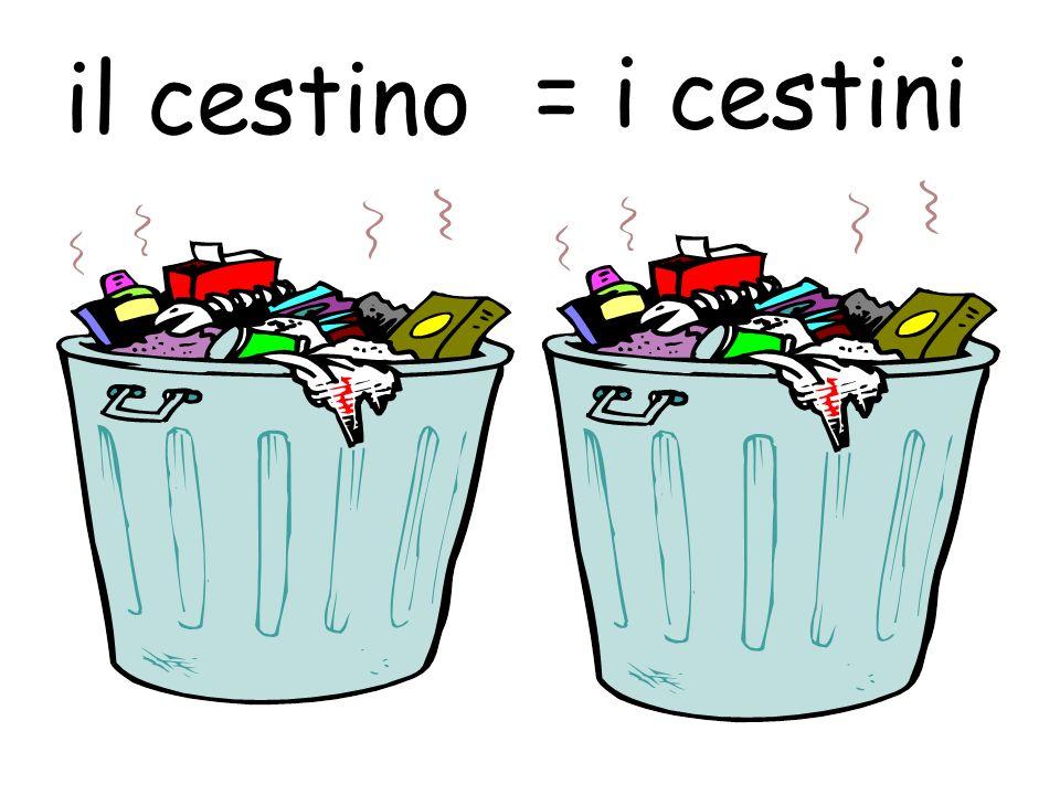 il cestino = i cestini