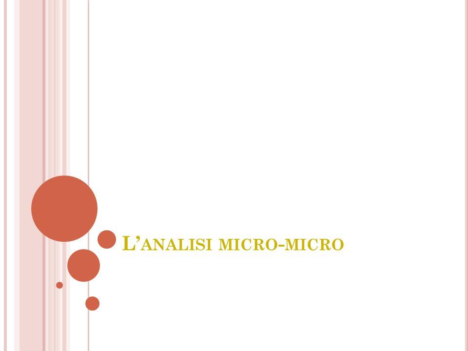 L ANALISI MICRO - MICRO