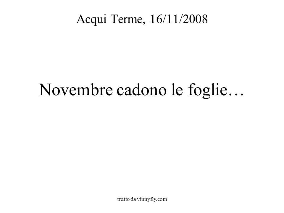 tratto da vinnyfly.com Novembre cadono le foglie… Acqui Terme, 16/11/2008