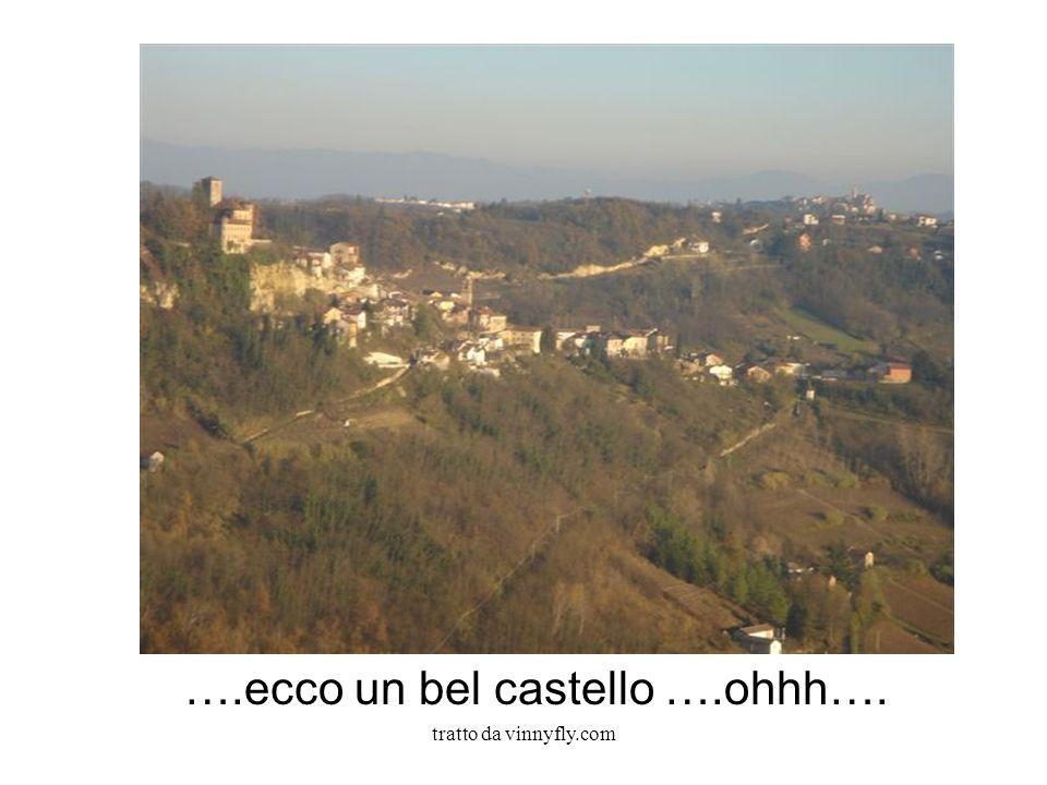 tratto da vinnyfly.com ….ecco un bel castello ….ohhh….