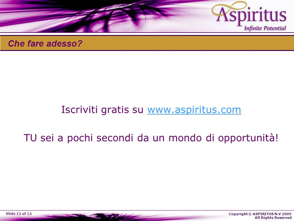 Copyright © ASPIRITUS N.V 2005 All Rights Reserved Slide 12 of 12 Che fare adesso.