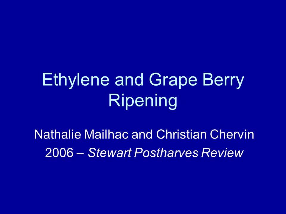 Etilene e colore delluva E stato mostrato anche leffetto positivo di trattamenti con ETOH sulle uve con uno stimolo dellevoluzione delletilene e dellaccumulo di antocianine (Chervin et al, 2001).