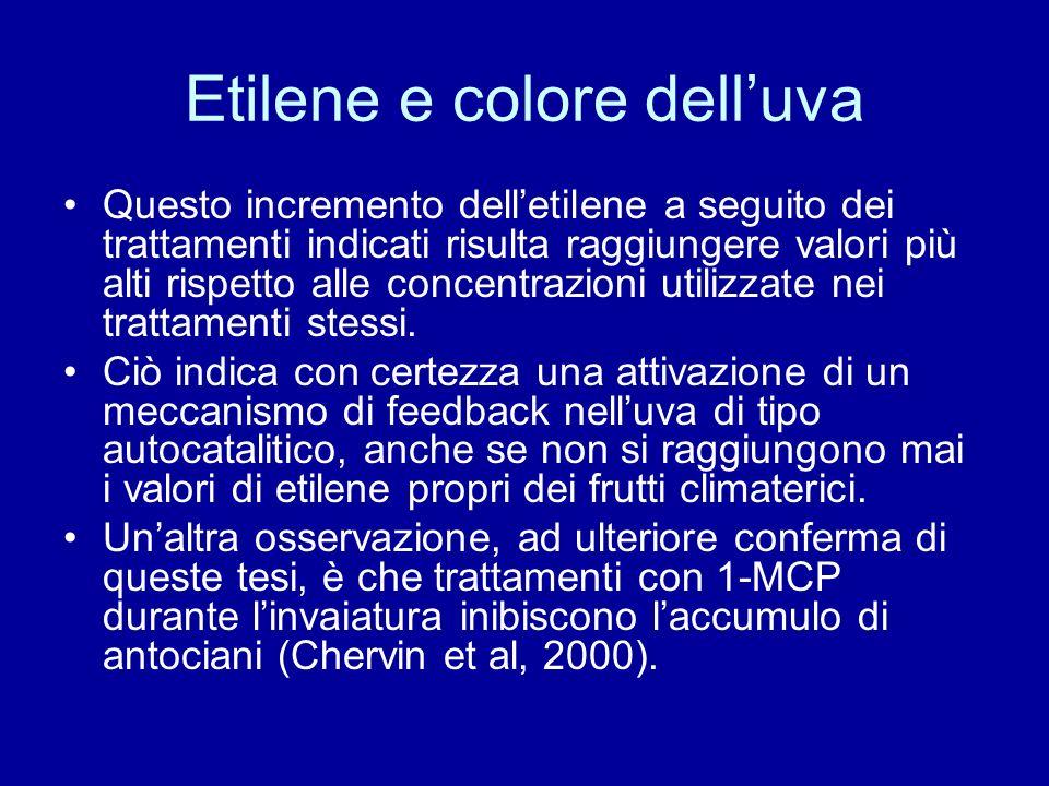 Etilene e colore delluva Questo incremento delletilene a seguito dei trattamenti indicati risulta raggiungere valori più alti rispetto alle concentrazioni utilizzate nei trattamenti stessi.