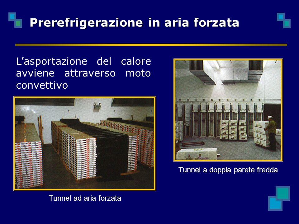 Prerefrigerazione in aria forzata Tunnel ad aria forzata Tunnel a doppia parete fredda Lasportazione del calore avviene attraverso moto convettivo