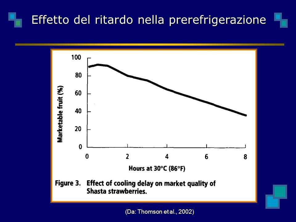Effetto del ritardo nella prerefrigerazione (Da: Thomson et al., 2002)