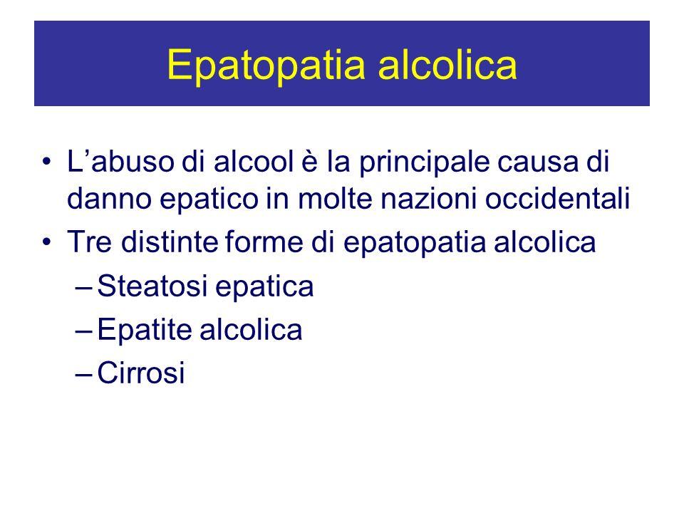 Epatopatia alcolica Labuso di alcool è la principale causa di danno epatico in molte nazioni occidentali Tre distinte forme di epatopatia alcolica –St