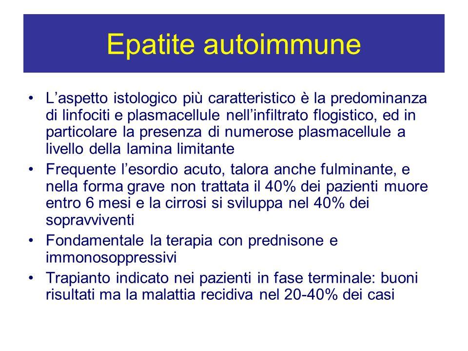 Epatite autoimmune Laspetto istologico più caratteristico è la predominanza di linfociti e plasmacellule nellinfiltrato flogistico, ed in particolare