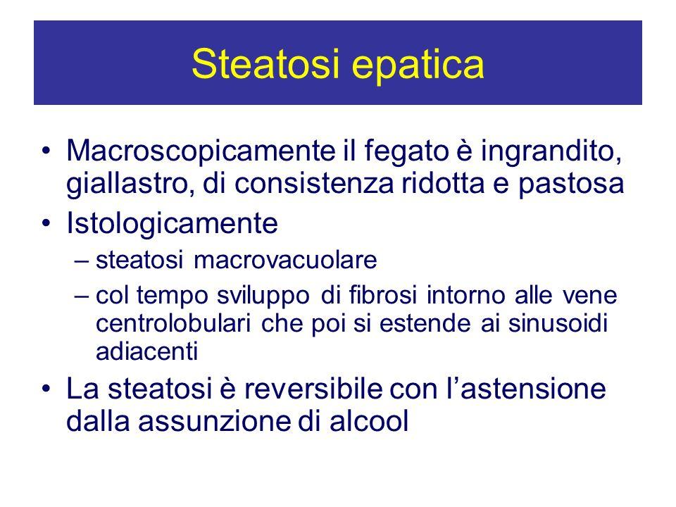 Steatosi epatica Macroscopicamente il fegato è ingrandito, giallastro, di consistenza ridotta e pastosa Istologicamente –steatosi macrovacuolare –col