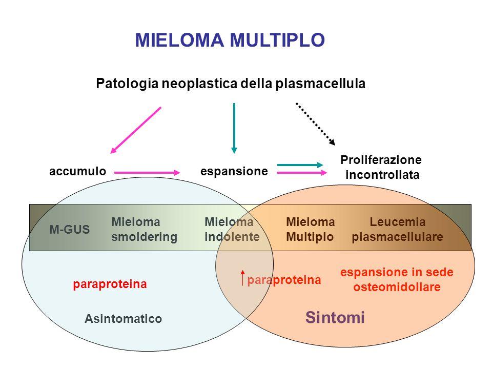 GENESI DEI SINTOMI NEL MIELOMA MIDOLLO IPERVISCOSITA COAGULOPATIA IMMUNDEFICIT PARAPROTEINA RENE DA MIELOMA (cast nephropathy) NEFRITE INTERSTIZIALE Deposizione catene leggere intratubulare amiloide 25% nel MM IgA <10% nel MM IgG 3 Plts, deficit VIII; Deficit Prot C,S polineuropatia Soppressione Ig immunità cellulare Cefalea, vertigini, parestesie Sonnolenza, offuscamento visus Sanguinamento, scompenso cardiaco Trombofilia emorragie infezioni