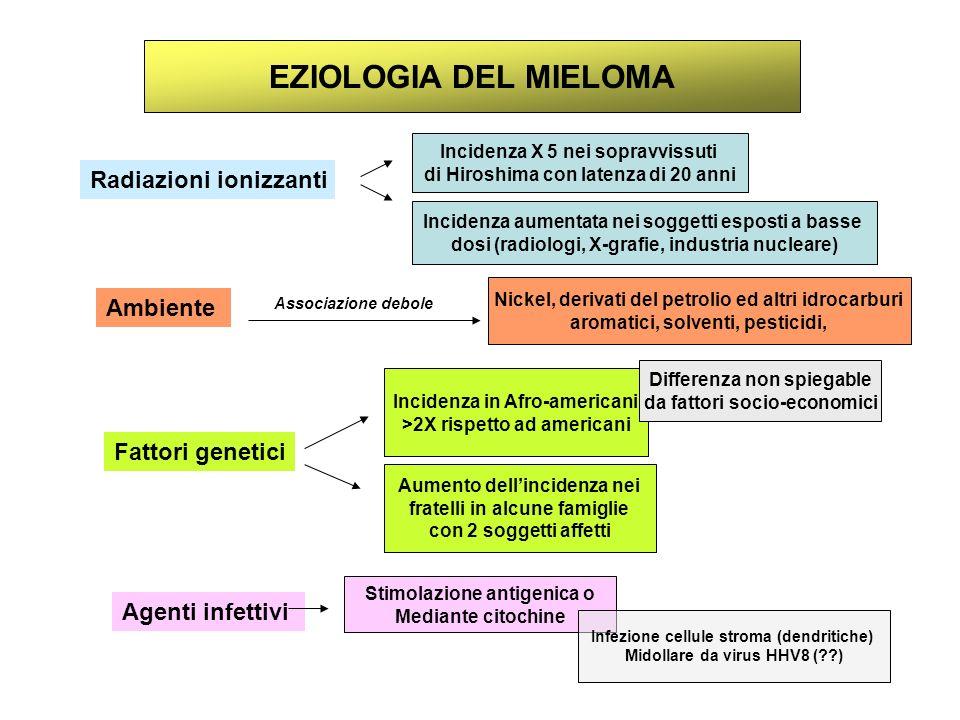 FREQUENZA DEL SOTTOTIPO IG NEL MIELOMA Elettroforesi proteine seriche su urinarie con immunofisazione Tipizzaione immunologica PC midollari con anti sieri k/λ G, A, D Casi selezionati Tutti i casi