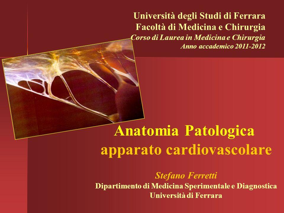 Università degli Studi di Ferrara Facoltà di Medicina e Chirurgia Corso di Laurea in Medicina e Chirurgia Anno accademico 2011-2012 Anatomia Patologic