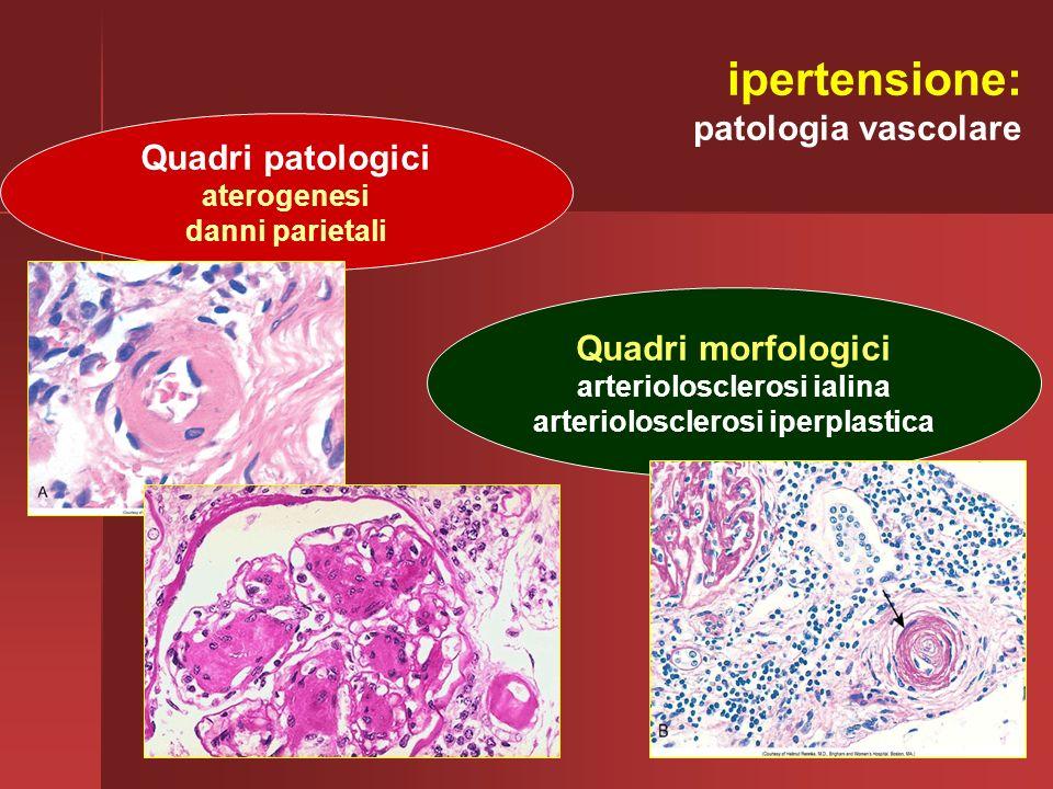 ipertensione: patologia vascolare Quadri patologici aterogenesi danni parietali Quadri morfologici arteriolosclerosi ialina arteriolosclerosi iperplas