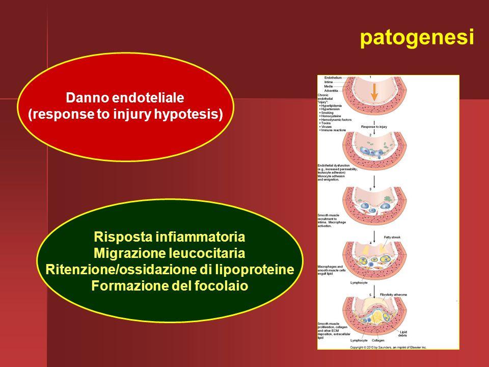 patogenesi Danno endoteliale (response to injury hypotesis) Risposta infiammatoria Migrazione leucocitaria Ritenzione/ossidazione di lipoproteine Form