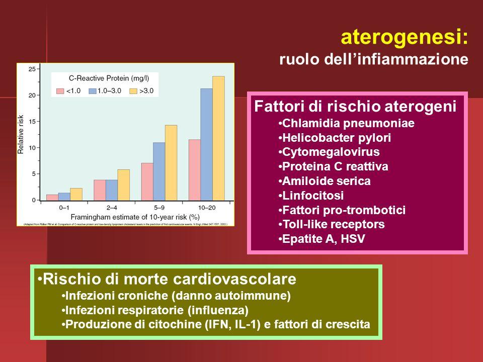 Rischio di morte cardiovascolare Infezioni croniche (danno autoimmune) Infezioni respiratorie (influenza) Produzione di citochine (IFN, IL-1) e fattor