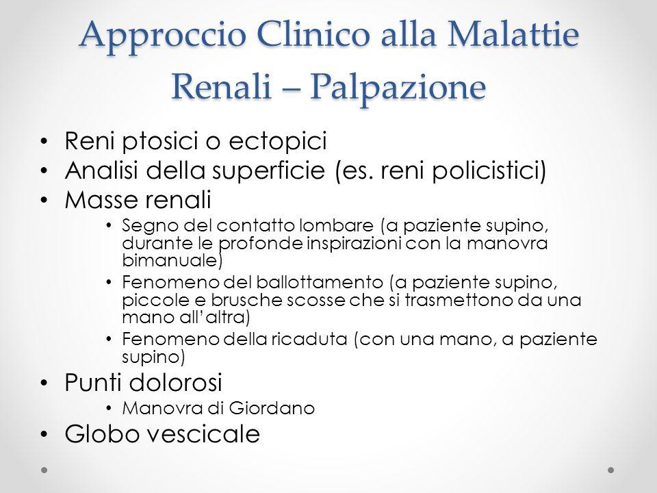 Approccio Clinico alla Malattie Renali – Palpazione Reni ptosici o ectopici Analisi della superficie (es. reni policistici) Masse renali Segno del con