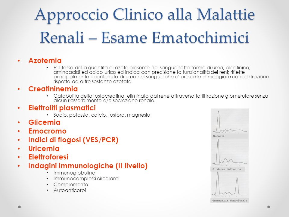 Approccio Clinico alla Malattie Renali – Esame Ematochimici Azotemia E' il tasso della quantità di azoto presente nel sangue sotto forma di urea, crea