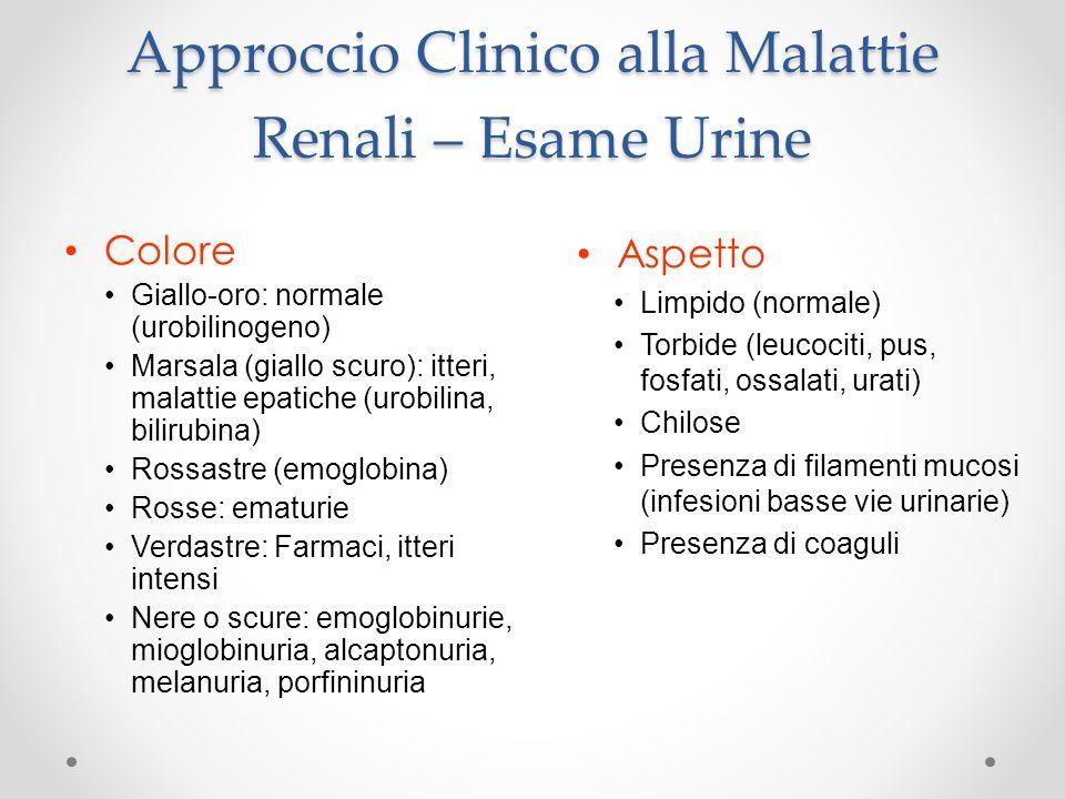Approccio Clinico alla Malattie Renali – Esame Urine Colore Giallo-oro: normale (urobilinogeno) Marsala (giallo scuro): itteri, malattie epatiche (uro