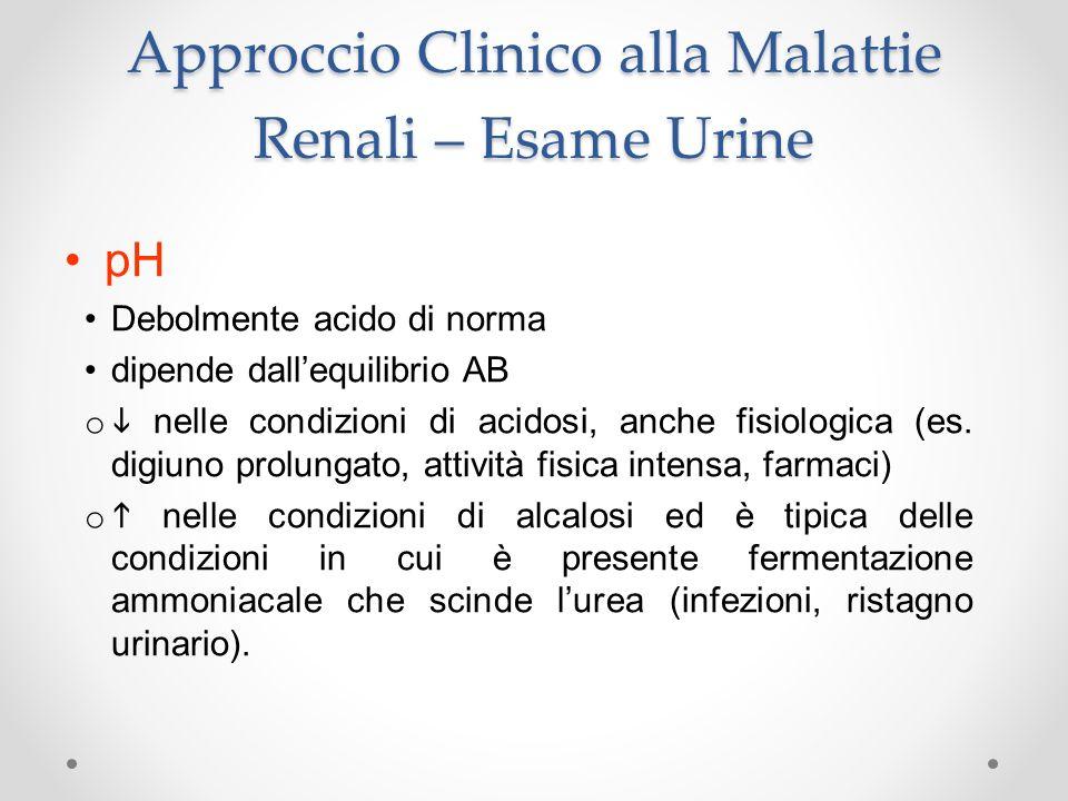 Approccio Clinico alla Malattie Renali – Esame Urine pH Debolmente acido di norma dipende dallequilibrio AB o nelle condizioni di acidosi, anche fisio