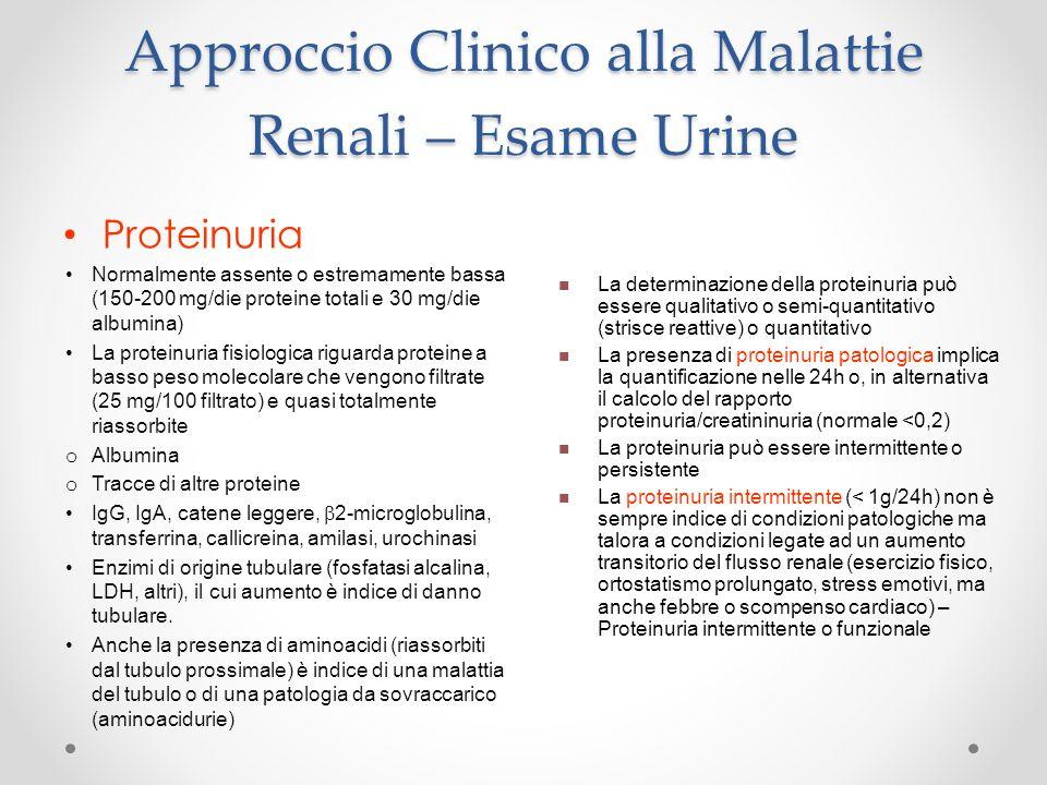 Approccio Clinico alla Malattie Renali – Esame Urine Proteinuria Normalmente assente o estremamente bassa (150-200 mg/die proteine totali e 30 mg/die
