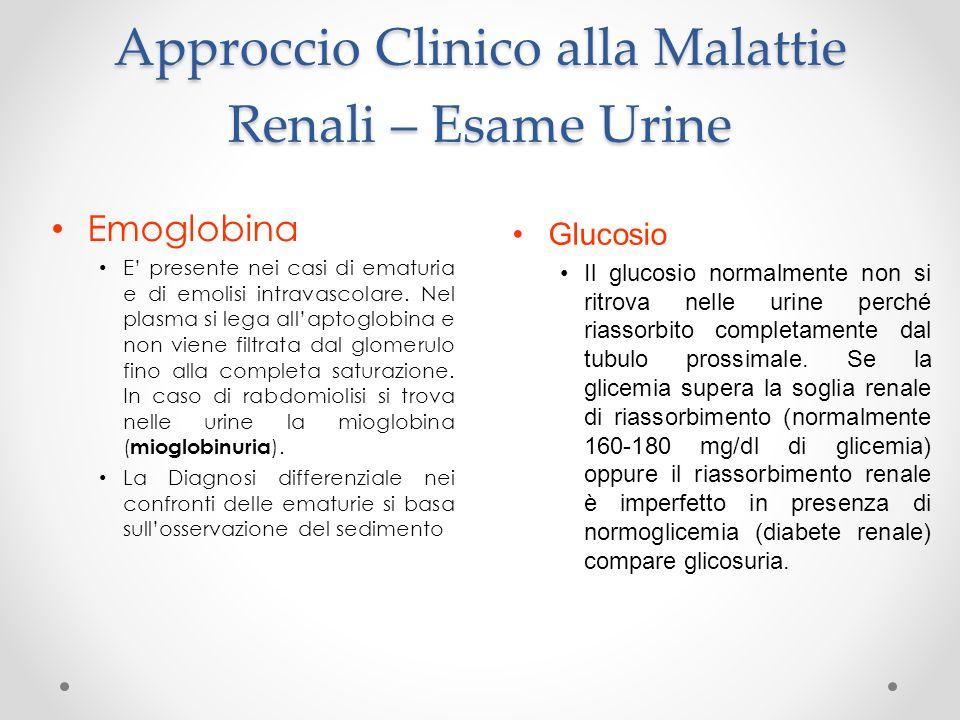 Approccio Clinico alla Malattie Renali – Esame Urine Emoglobina E presente nei casi di ematuria e di emolisi intravascolare. Nel plasma si lega allapt