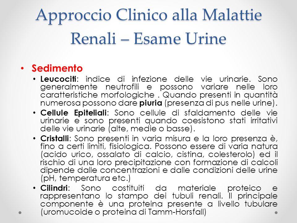 Approccio Clinico alla Malattie Renali – Esame Urine Sedimento Leucociti: indice di infezione delle vie urinarie. Sono generalmente neutrofili e posso