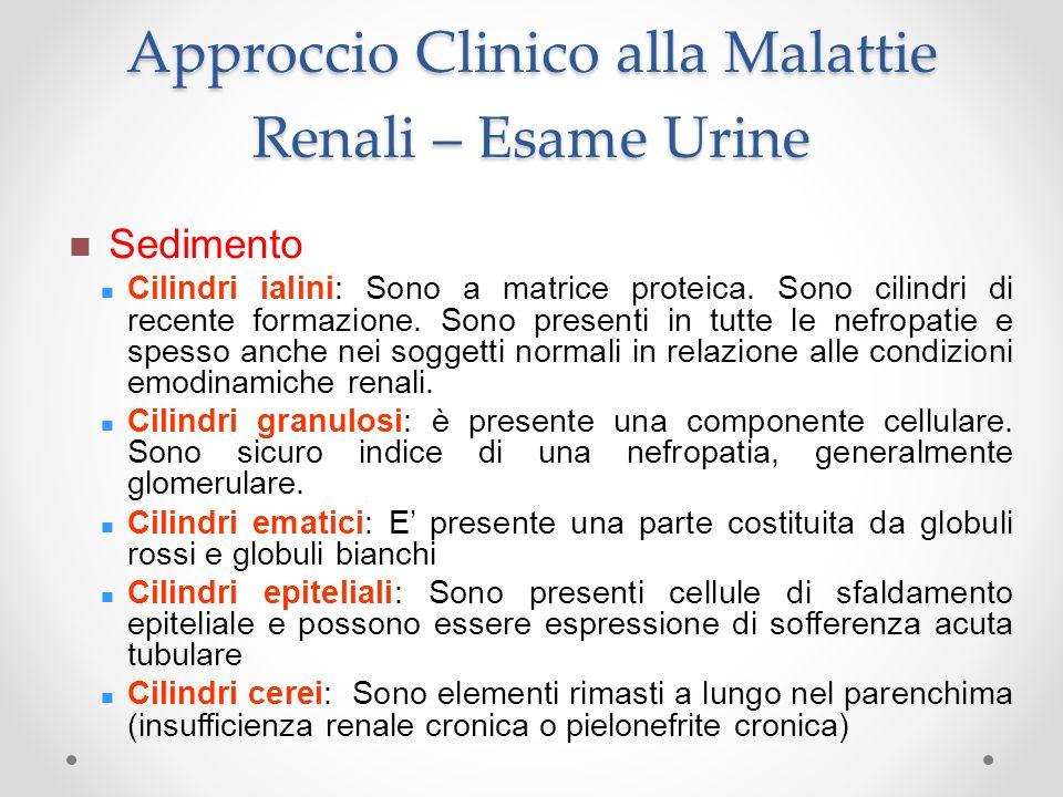 Approccio Clinico alla Malattie Renali – Esame Urine Sedimento Cilindri ialini: Sono a matrice proteica. Sono cilindri di recente formazione. Sono pre