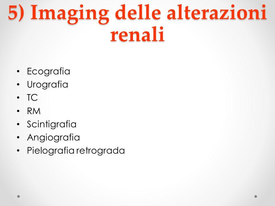 5) Imaging delle alterazioni renali Ecografia Urografia TC RM Scintigrafia Angiografia Pielografia retrograda