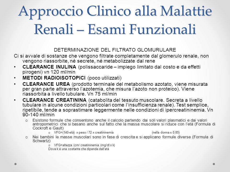 Approccio Clinico alla Malattie Renali – Esami Funzionali DETERMINAZIONE DEL FILTRATO GLOMURULARE Ci si avvale di sostanze che vengono filtrate comple