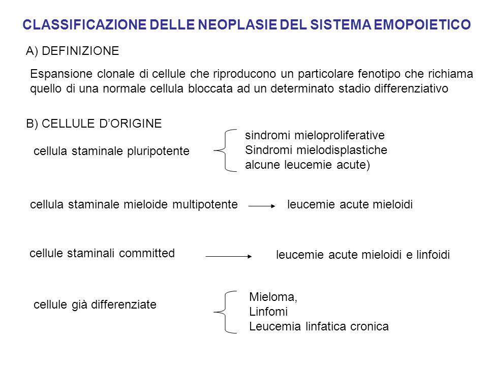 SINDROMI MIELOPROLIFERATIVE croniche Leucemia mieloide cronica Policitemia vera Trombocitemia essenziale Mielofibrosi con metaplasia mieloide Emoglobinuria parossisitica notturna Sindrome ipereosinofila (ALCUNE) acute Leucemie mieloidi acute Classificazione FAB Classificazione WHO IL CLONE NEOPLASTICO MANTIENE LA CAPACITA MATURATIVA SINO AGLI STADI TERMINALI IL CLONE NEOPLASTICO PRESENTA UN BLOCCO MATURATIVO INTRAMIDOLLARE AD UNO STADIO IN GENERE PRECOCE
