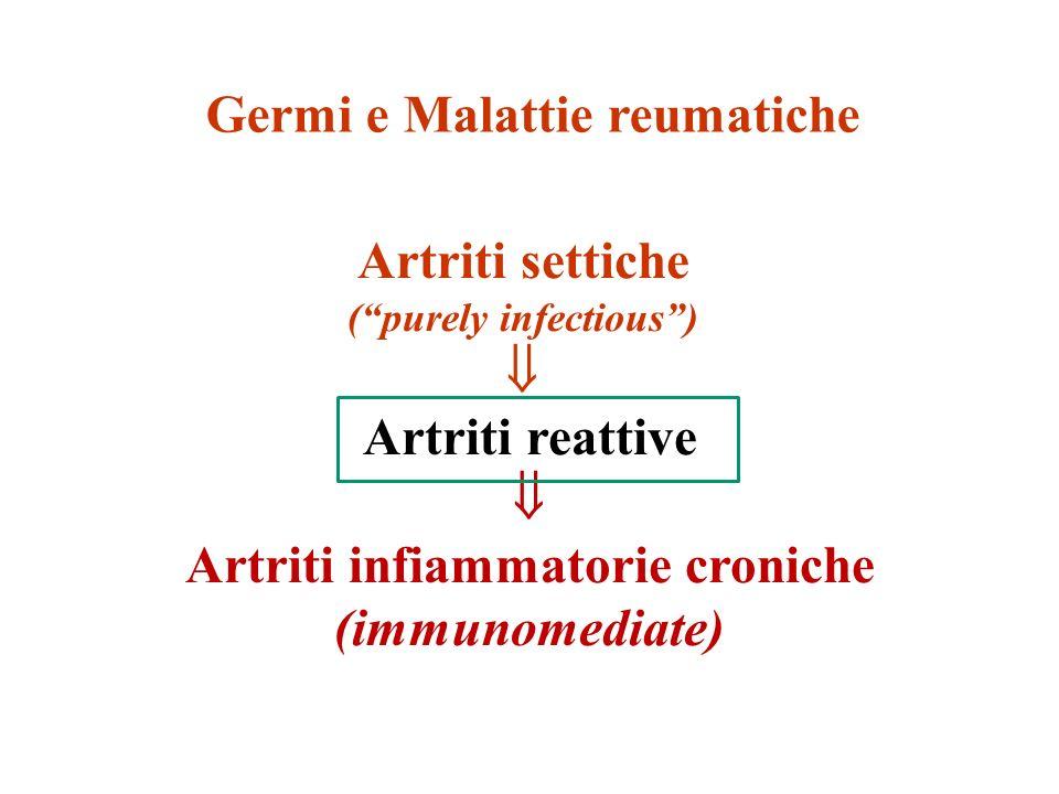 Artriti settiche (purely infectious) Artriti reattive Artriti infiammatorie croniche (immunomediate) Germi e Malattie reumatiche
