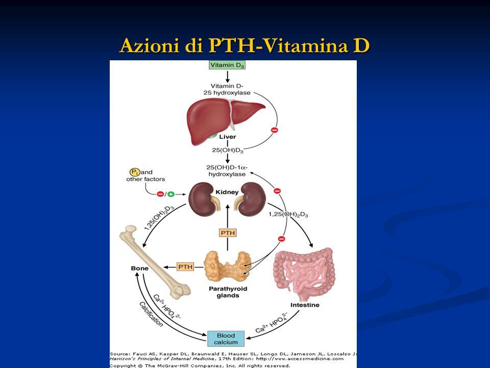 Azioni di PTH-Vitamina D