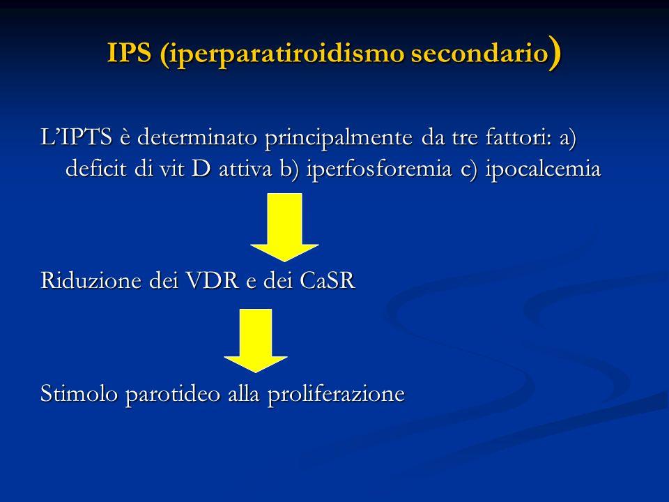 IPS (iperparatiroidismo secondario ) LIPTS è determinato principalmente da tre fattori: a) deficit di vit D attiva b) iperfosforemia c) ipocalcemia Ri