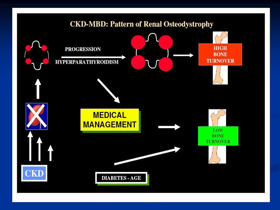 Malattia CVD e CKD-MBD La CKD è una condizione associata ad elevata mortalità e la patologia cardiovascolare è la principale causa di morte nei pazienti in IRC i terapia conservativa o in dialisi La CKD è una condizione associata ad elevata mortalità e la patologia cardiovascolare è la principale causa di morte nei pazienti in IRC i terapia conservativa o in dialisi La mortalità nei pazienti in dialisi è 5-500 volte superiore rispetto alla popolazione generale La mortalità nei pazienti in dialisi è 5-500 volte superiore rispetto alla popolazione generale Il rischio dei pazienti nefropatici è diverso rispetto a quello della popolazione generale Il rischio dei pazienti nefropatici è diverso rispetto a quello della popolazione generale