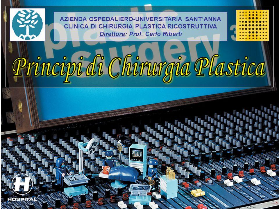 AZIENDA OSPEDALIERO-UNIVERSITARIA SANTANNA CLINICA DI CHIRURGIA PLASTICA RICOSTRUTTIVA Direttore: Prof. Carlo Riberti