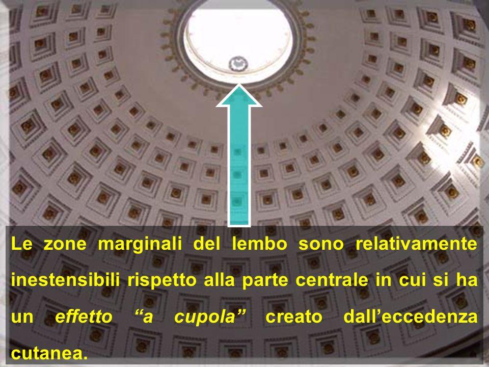 Le zone marginali del lembo sono relativamente inestensibili rispetto alla parte centrale in cui si ha un effetto a cupola creato dalleccedenza cutane