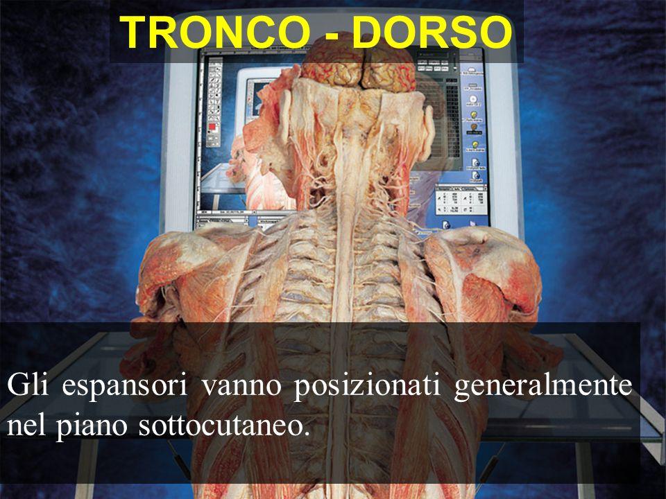 TRONCO - DORSO Gli espansori vanno posizionati generalmente nel piano sottocutaneo.