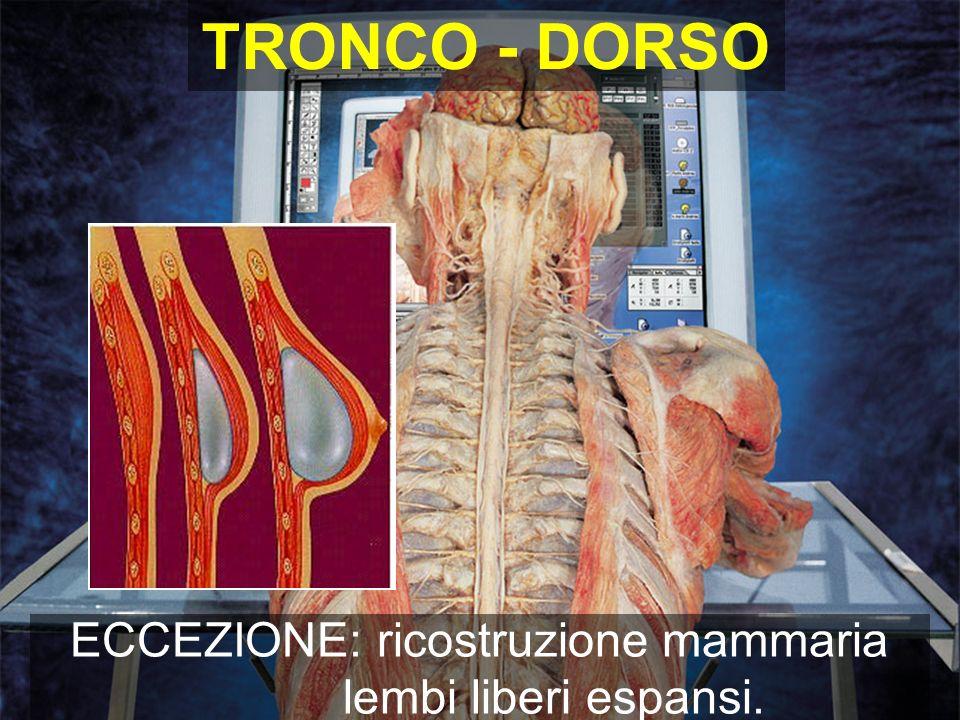 ECCEZIONE: ricostruzione mammaria lembi liberi espansi. TRONCO - DORSO