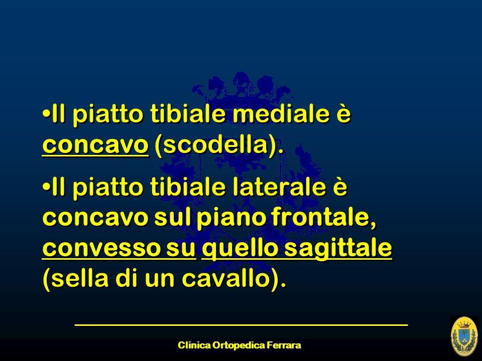 Clinica Ortopedica Ferrara Il piatto tibiale mediale è concavo (scodella). Il piatto tibiale laterale è concavo sul piano frontale, convesso su quello