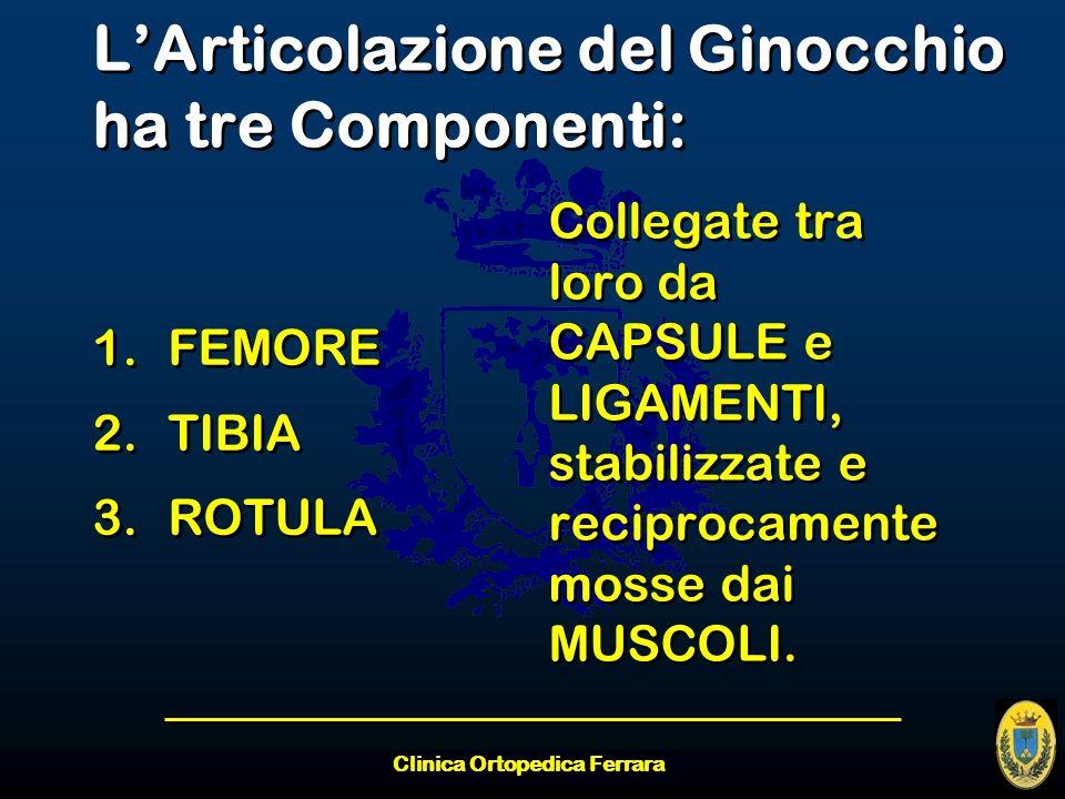Clinica Ortopedica Ferrara LArticolazione del Ginocchio ha tre Componenti: 1.FEMORE 2.TIBIA 3.ROTULA 1.FEMORE 2.TIBIA 3.ROTULA Collegate tra loro da C