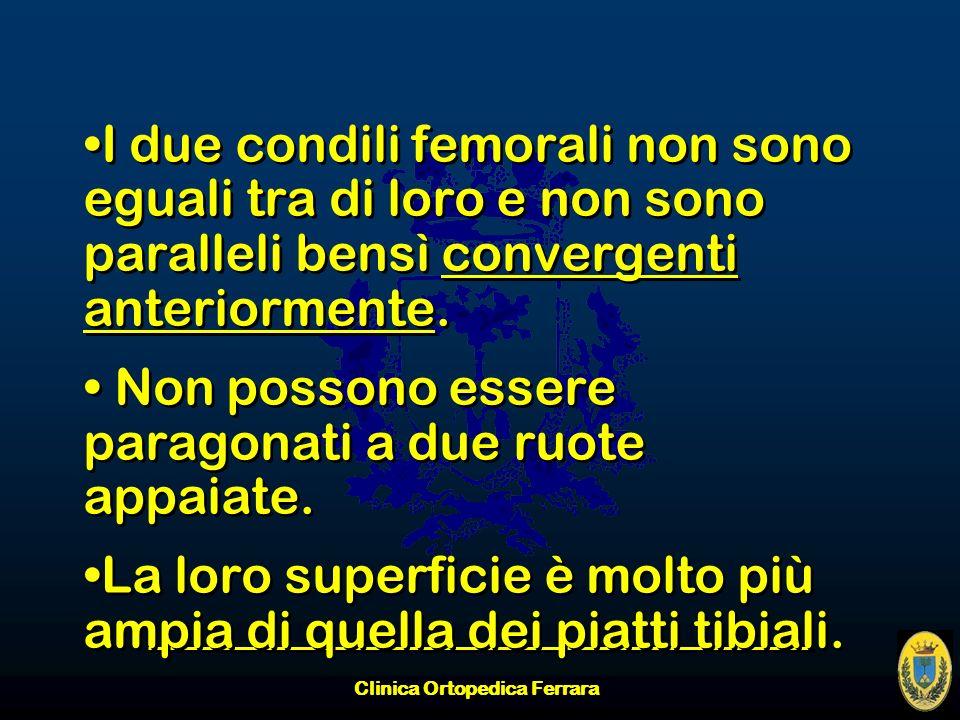 Clinica Ortopedica Ferrara I due condili femorali non sono eguali tra di loro e non sono paralleli bensì convergenti anteriormente. Non possono essere
