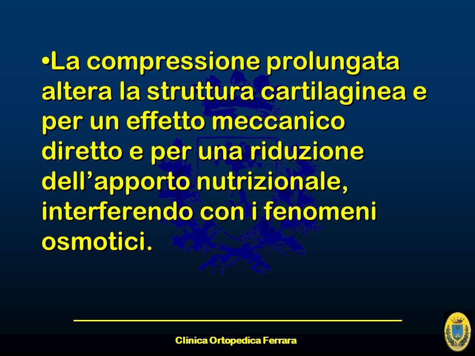 Clinica Ortopedica Ferrara La compressione prolungata altera la struttura cartilaginea e per un effetto meccanico diretto e per una riduzione dellappo