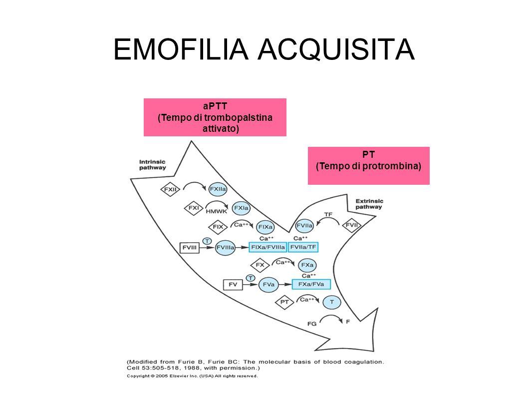 PT (Tempo di protrombina) aPTT (Tempo di trombopalstina attivato) EMOFILIA ACQUISITA