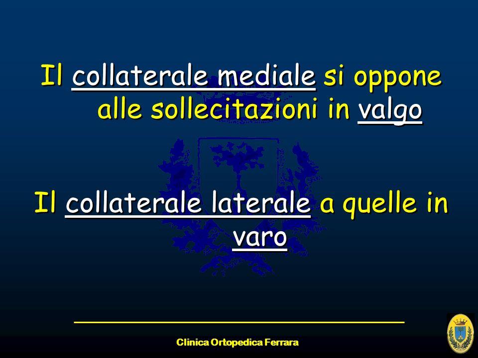 Clinica Ortopedica Ferrara Il collaterale mediale si oppone alle sollecitazioni in valgo Il collaterale laterale a quelle in varo Il collaterale media