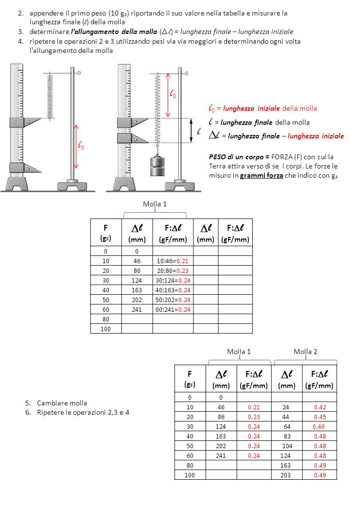 l = lunghezza finale della molla l = lunghezza finale – lunghezza iniziale PESO di un corpo = FORZA (F) con cui la Terra attira verso di se i corpi. L