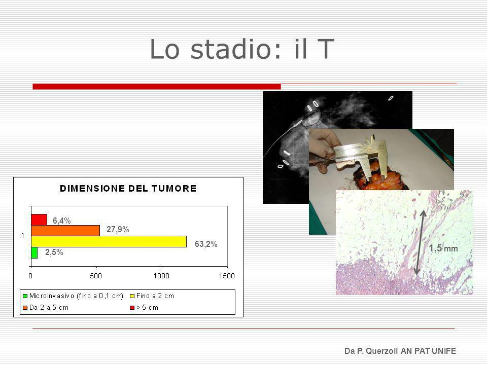1,5 mm 6,4% 27,9% 63,2% 2,5% Lo stadio: il T Da P. Querzoli AN PAT UNIFE