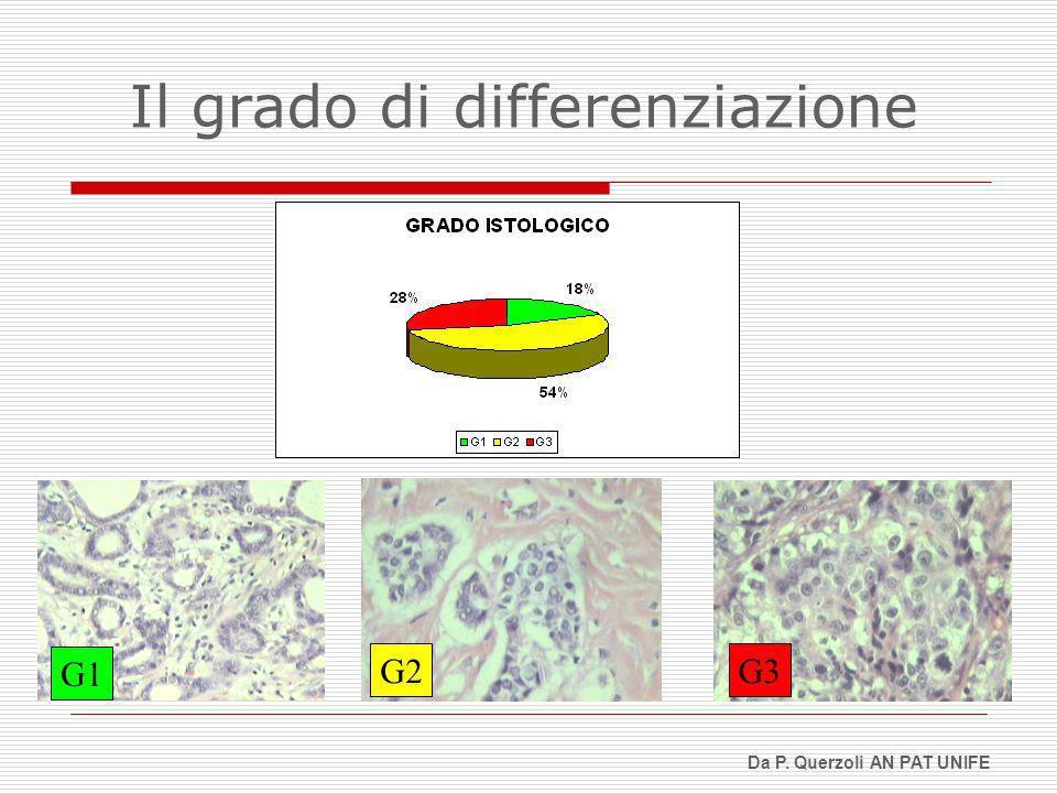 G1 G2G3 Da P. Querzoli AN PAT UNIFE Il grado di differenziazione