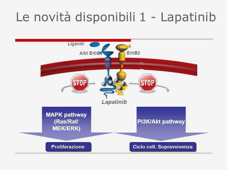 Ligandi ErbB2 Altri ErbB ProliferazioneProliferazione Ciclo cell. Sopravvivenza PI3K/Akt pathway MAPK pathway (Ras/Raf/ MEK/ERK) Lapatinib Le novità d